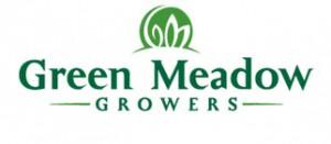 green-meadow